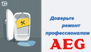 Ремонт холодильников Aeg СПб