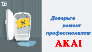 Ремонт холодильников акаи