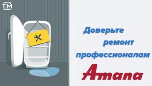 ремонт холодильников амана спб