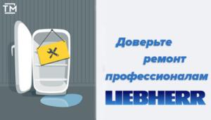 ремонт холодильников liebherr СПб