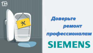 ремонт холодильников сименс СПб