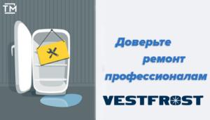 ремонт холодильников vestfrost СПб